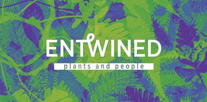 entwined-plants-people
